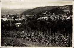 Postcard Lörrach in Baden Württemberg, Blick auf den Ort, Weinstöcke