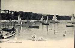 Ak Ouchy Lausanne Kt. Waadt, Au Port, Segelboote, Hafenpartie, Schwäne