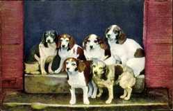 Ak Photochromie, sechs gefleckte Hunde ein einem Hauseingang stehend