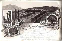 Litho Lübbecke in Ostwestfalen, Kriegerdenkmal, Wartturm, Reinebergs Linde