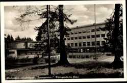 Ak Elbingerode im Oberharz, Diakonissenmutterhaus Neuwandsburg