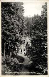 Postcard Hohegeiß Braunlage im Oberharz, Blick auf die Wolfsbachmühle