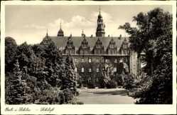 Postcard Oleśnica Oels Schlesien, Blick auf das Schloss, Parkanlage, Rankenbewuchs