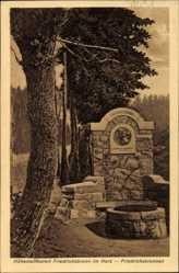 Postcard Friedrichsbrunn Thale im Harz, Blick auf den Friedrichsbrunnen