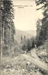 Ak Luisenthal in Thüringen, Partie im Schwarzwald, Zimmertal