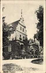 Postcard Piesdorf Könnern, Blick auf das Schloss, Rankenbewiuchs, Park