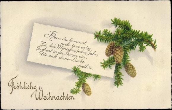 Ansichtskarte Postkarte Frohe Weihnachten Tannenzapfen