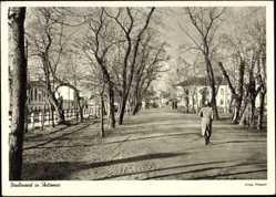 Postcard Shitomie Ukraine, Blick auf den Boulevard