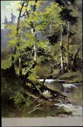 Künstler Ak Tuggenberger,Landschaftsbild, Waldpartie, Bachstelle, Blick vom Ufer