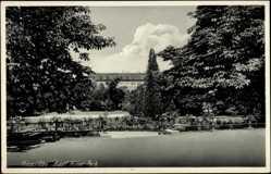Postcard Riesa an der Elbe, Partie im Park, Zaun, Bäume