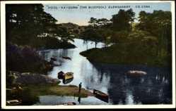 Postcard Pool Na Gurm Glengarriff Irland, Ufer, Ruderboote