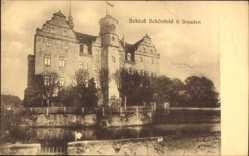 Ansichtskarte / Postkarte Schönfeld in Sachsen, Gewässer, Blick zu dem Schloss, Schwan