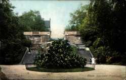 Ak Riesa an der Elbe Sachsen, Partie im Albertpark mit Blick auf die Freitreppe