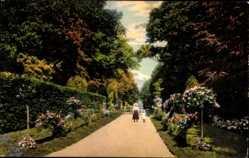 Postcard Riesa an der Elbe Sachsen, Partie im Stadtpark, Kinder, Weg, Rosen