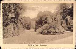 Postcard Riesa an der Elbe Sachsen, Partie im Stadtpark, Turm, Weg