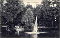 Ak Leszno Lissa Posen, Schlossteich, Fontäne, Besucher