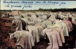 Ansichtskarten Kategorie Muslime