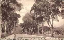 Postcard Port of Spain Trinidad Tobago, Frederick Street, North View