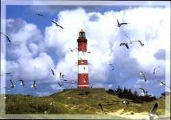 Leuchtturm mit Möwenschwarm