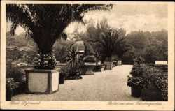 Partie aus dem Fürstengarten