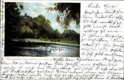 Thiergartensee, Lauterberg
