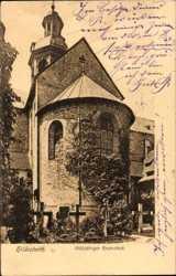 1000jähriger Rosenstock