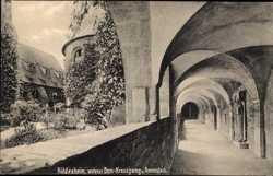 Kreuzgang und Rosenstock