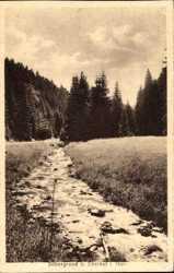 Silbergrund, Bach