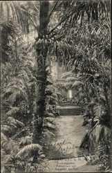 Palmenhaus vom Wasserfall