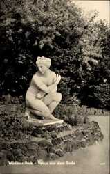 Venus aus dem Bade