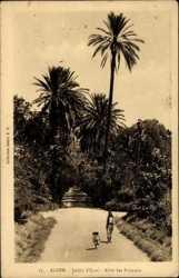 Jardin d'Essai, Allee des Palmiers