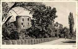 Moritzburg, Stengel